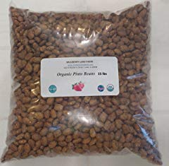 Pinto Beans Dried